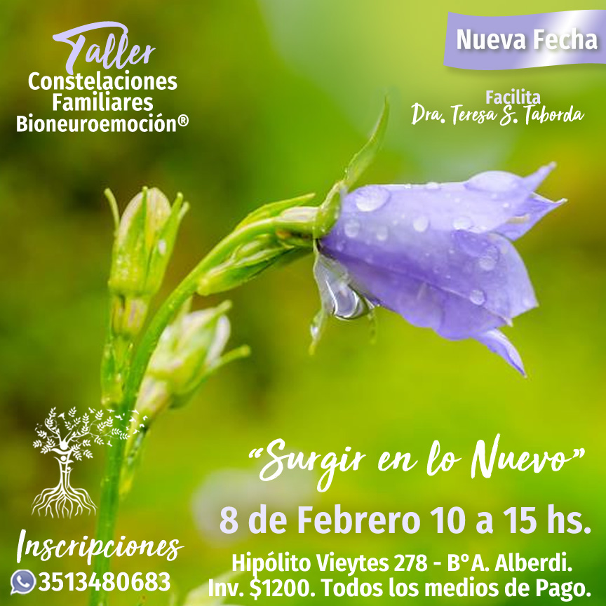 Constelaciones familiares en Córdoba Luz y Movimiento